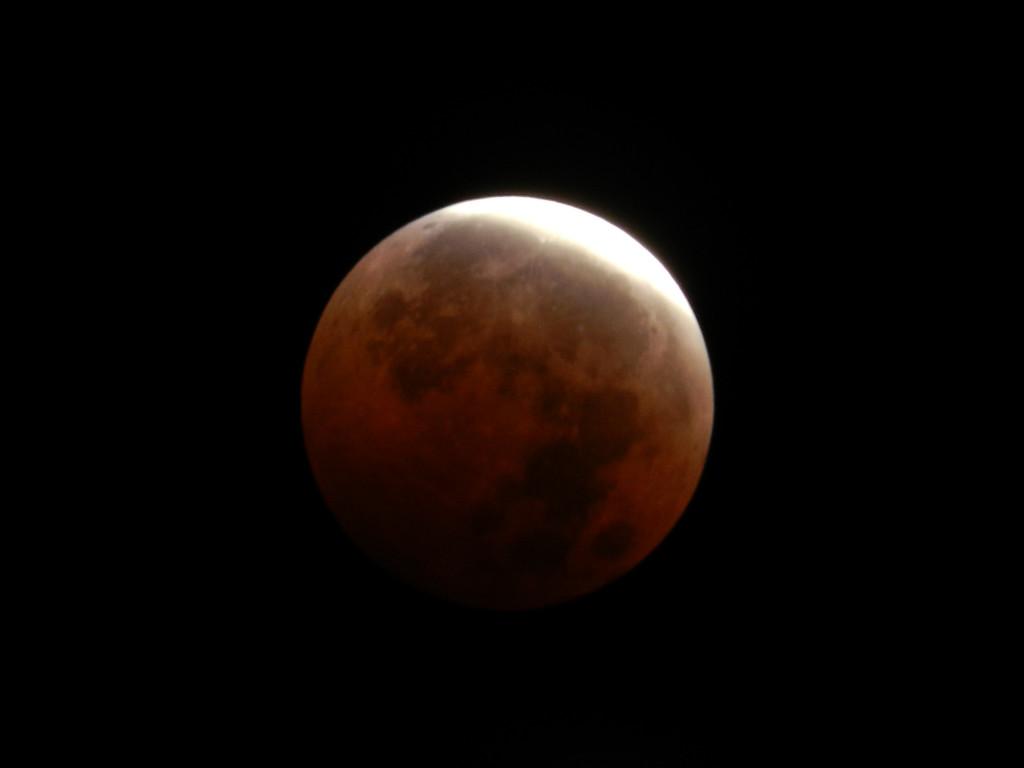 Blood-Moon-SF-Bay-Area-Yingying-Zhang