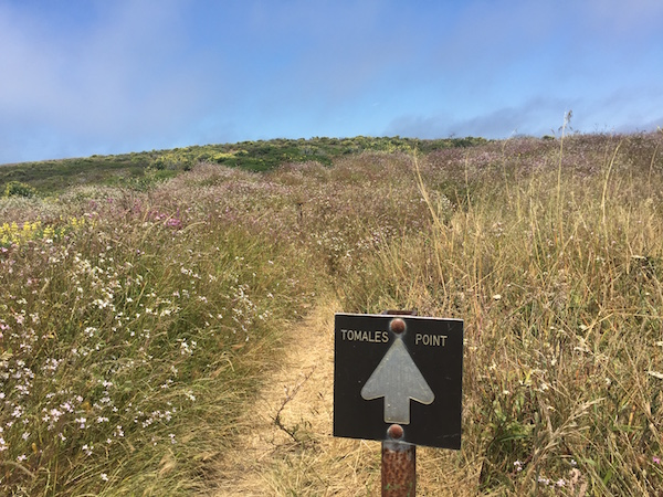20170624 Tomales Point Trail - 5 Point Reyes