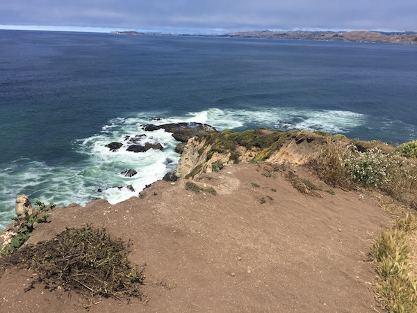 20170624 Tomales Point Trail - 6 Point Reyes