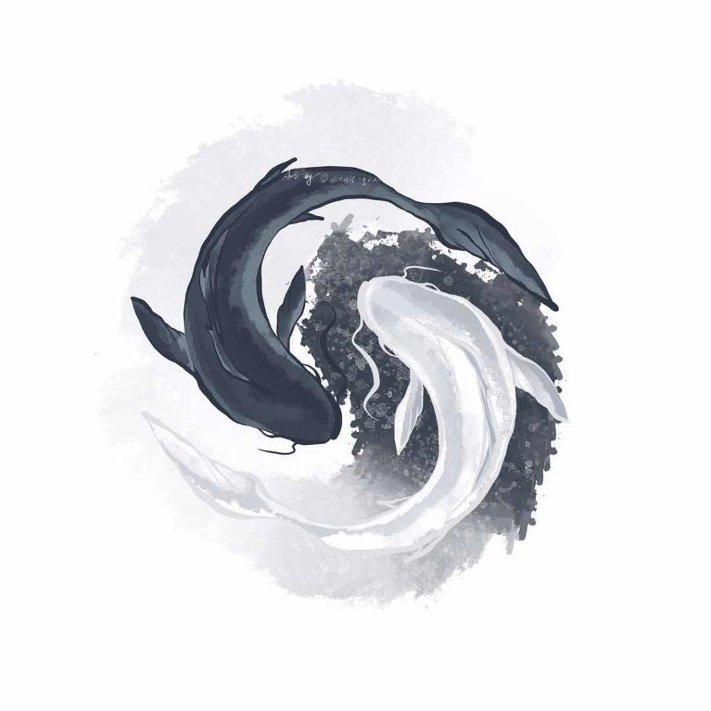 taichi fish drawing by yingying zhang